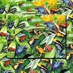 Friendly Frogs jigsaw review